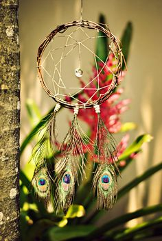 Dreaming of Jewels - Dream Catcher by charmingluna, $24.00