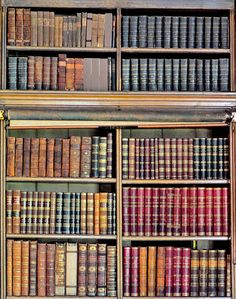 Bookshelves, Bookcase, State Of Decay, Old Abandoned Buildings, Nook And Cranny, Book Aesthetic, Derbyshire, Book Nooks, I Love Books
