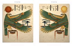 Egyptian Falcon art prints