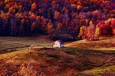 Alone on a Hill by 68steelphotos