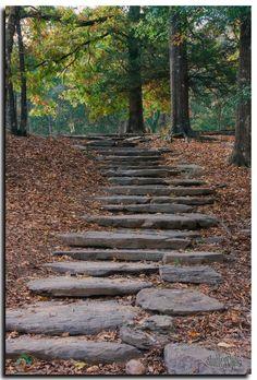˚Stone Stairs - Beavers Bend State Park, Oklahoma Beavers Bend Oklahoma, Beavers Bend State Park, State Parks, Broken Bow Cabins, Broken Bow Oklahoma, Beaver Bend, Stone Stairs, Travel Oklahoma, Day Trips