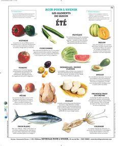 Planche Deyrolle : l'Eté > Pourquoi pas une infographie par mois  avec une sélection des différents produits de saison