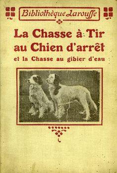 La chasse à tir au chien d'arrêt et la chasse au gibier d'eau. 1910