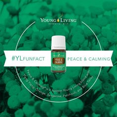 Young Living Essential Oils: Peace & Calming   WWW.THESAVVYOILER.COM
