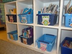 owl classroom theme | Owl Theme Classroom / Literacy and Laughter -