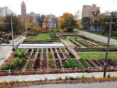 Vote to help build this Detroit community garden!