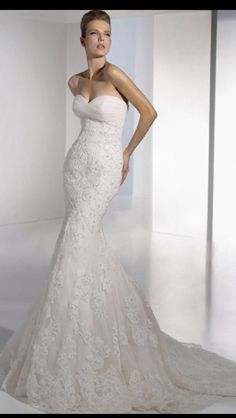 Mermaid lace gown with chapel sweep