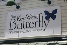 The Key West Butterfly and Nature Conservatory #keywest #MArriottCourtyardKeyWest #dreamkeywestvacation