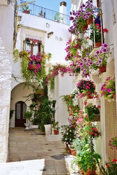 """What to see in Cisternino? Gorgeous white alleys, hidden courtyards, houses with outside stairways, but above all the yummy """"fornelli"""". Places To Travel, Travel Destinations, Places To Visit, Travel Diys, Travel Info, Vacation Places, Budget Travel, Travel Guide, Wanderlust Travel"""