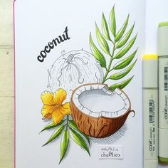 "I like #coconut only in ""Bounty"" :) But it's rather interesting to draw :) Я предпочитаю #кокос только в виде батончика ""Баунти"", но рисовать его довольно интересно :)"