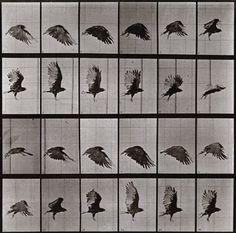 Last chance: Eadweard Muybridge, 'Free Love Gods'