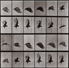 Last chance: Eadweard Muybridge, 'Free Love Gods'