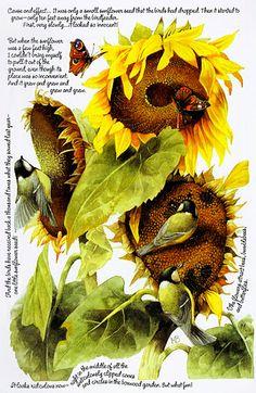 Marjolein Bastin - the sunflower story. https://plus.google.com/photos/113831854263667470195/albums/5676441668241006513/5676442377582096978?banner=pwa&authkey=CP7Gv9r30uL04QE&pid=5676442377582096978&oid=113831854263667470195