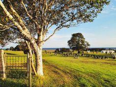 Family travel on Prince Edward Island: Part 2 Places To Travel, Places To Visit, Canadian Travel, Prince Edward Island, United States Travel, Far Away, Vacation Destinations, Farm Life, Family Travel