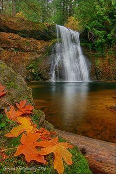 Upper North Falls (65 feet) - Silver Falls - Oregon State Park♥