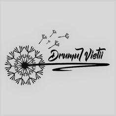 banner drumul vietii Brocolli, Vegan, Carpe Diem, Logos, Christmas, Travel, Fine Dining, Salads, Yule