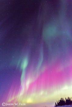 """FULL SPECTRUM"" Aurora Borealis, Fairbanks, Alaska"