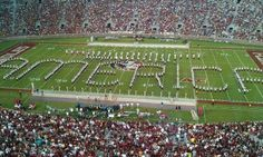 Love the Seminole Band!  http://ThisIsSeminoleCountry.com