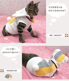 Natsume Yuujinchou Nyanko-sensei Pet Clothing White Cat Costume #Brandnew