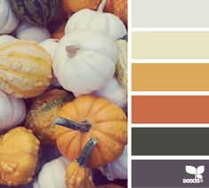 Autumn Hues - http://design-seeds.com/index.php/home/entry/autumn-hues4
