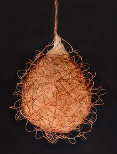 The egg sack of a pirate spider (Ero sp.) | 2013 Photomicrography Competition | Nikon Small World