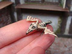skeleton bird - 12th scale  by georgia marfels  | eBay