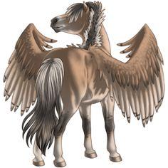 Pegasus Lusitano Wildkleur