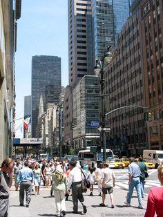 5th Ave NY