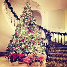 11 Best January Images Christmas Fairy Lights Christmas