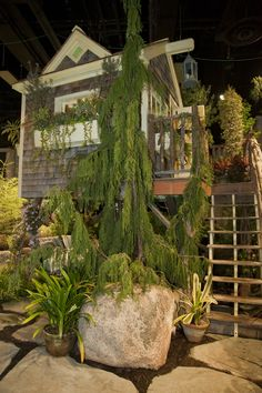 2011 Boston Flower & Garden Show, Miskovsky Landscaping & Allen C. Haskell Horticulturists, Inc.