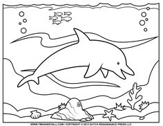 Printable Dolphin Pictures | Dolphin - Free Printable Coloring ...