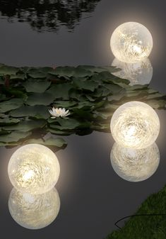 тц Striking LED lighting set for your pond! The Portable Perennial Garden gardens, gardening, contai Indoor Pond, Outdoor Ponds, Ponds Backyard, Koi Ponds, Garden Lighting Ideas Uk, Backyard Lighting, Pond Lights, Fountain Lights, Pond Decorations