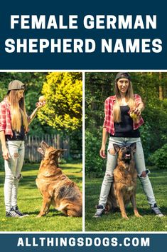 Female Shepherds are renowned for their commanding and powerful nature, therefore we have compiled a list of female German Shepherd names inspired by inspirational and strong female figures! Check it out  #germanshepherdnames #femalegermanshepherdnames #namesforagermanshepherd Puppies Names Female, Female Dog Names, Puppy Names, German Shepherd Names, Female German Shepherd, The Good German, Cute Names, German Dogs, Types Of Animals