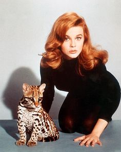 Ann Margaret - What red blooded teenage boy in the 1960s was not jealous of Elvis being able to kiss Ann Margaret?