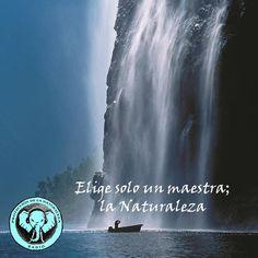 Sintoniza las frecuencias de la Naturaleza y el Ser http://naturalezaproteccion.blogspot.com