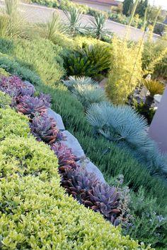 Lawn Free Gardens