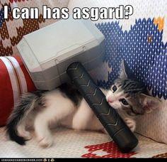 I can has Asgard?