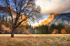 Yosemite Fall Home Decor, Half Dome Canvas by SusanTaylorPhoto on Etsy