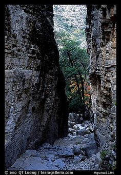 Narrow passage between cliffs, Devil's Hall. Guadalupe Mountains National Park,Part of gallery of color pictures of US National Parks by professional photographer QT Luong, available as prints or for licensing. Texas National Parks, American National Parks, Guadalupe Peak, Great Places, Places To Go, Guadalupe Mountains National Park, Texas Vacations, Park Pictures, Picture Photo