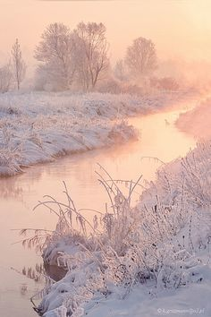 "magic-spelldust: "" Snowy Pastel Winter Scenes by Katarzyna Gritzmann "" Winter Szenen, Winter Love, Winter Magic, Winter Wonder, Winter Sunset, Winter Pictures, Nature Pictures, Snow Photography, Winter Wallpaper"