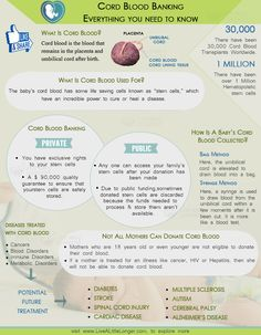 Cord Blood Banking, Everything You Need To Know. #health #nature For More: www.livealittlelonger.com