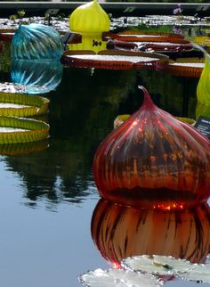Chihuly installation, St. Louis