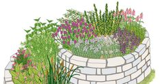 Eine Kräuterspirale bereichert die Gewürzvielfalt Ihrer Küche, denn sie bietet die Möglichkeit, auf kleinstem Raum eine große Kräuter-Vielfalt anzubauen.