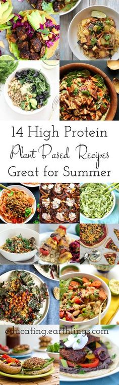 high protein plant based recipe round up for summer