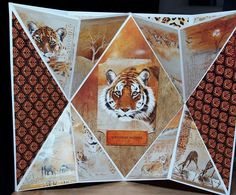 Made by Lauren Clark - I made this dimensional paper folded card using pollyanna pickerings imagery from the wildlife crafting cds bought to us by creative crafting world Animal Cards, African Animals, Folded Cards, Birthday Wishes, Charity, Layouts, Card Ideas, Wildlife, Card Making