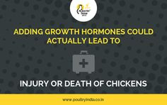 DID YOU KNOW???  Hit Like if you are agree.... Visit us @ www.poultryindia.co.in
