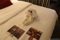 Disney Fantasy Staterooms every night you got chocolates and folded towels <3