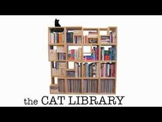 The Cat Library - I love this bookcase and this video!