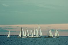 Wednesday night races on Lake Pontchartrain, New Orleans