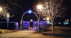 Lighting of Steelhead Park December 2015 Houston, BC. Travel Houston British Columbia